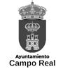 Proyectos ACO - Ayuntamiento Campo Real